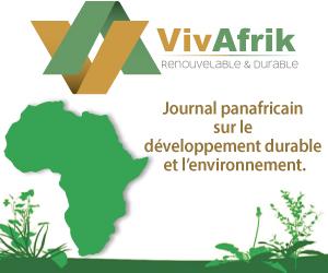 Actualité en Afrique : environnement, énergies renouvelables, climat